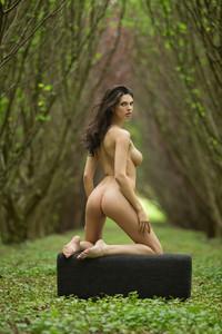 Big-Titted-Delicious-Beauty-Jasmine-i7ahkr7edp.jpg